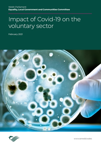 Impact of Covid 19 on the Voluntary Sector in Wales cover jan 21