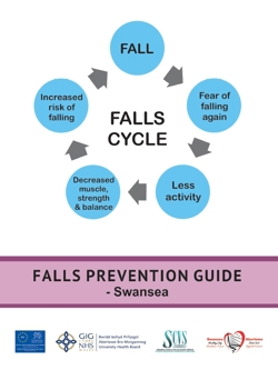 Falls Prevention Guide for Swansea front cover